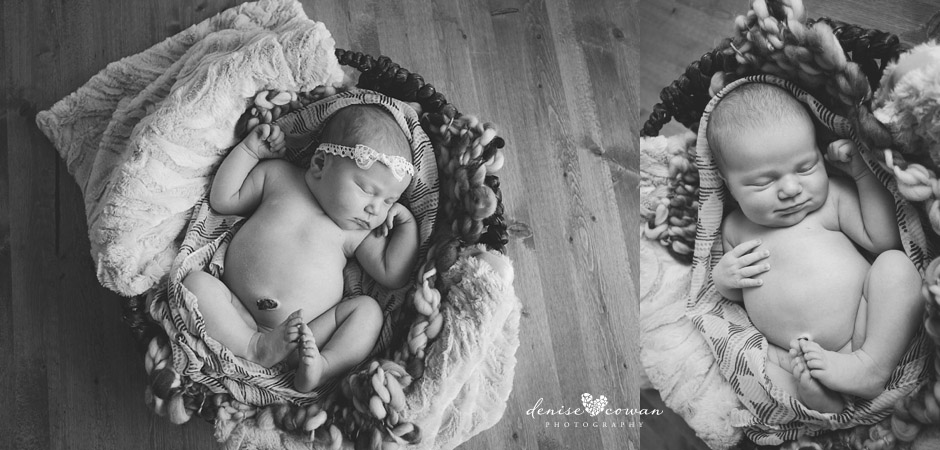 Humble newborn photography by denise cowan photography