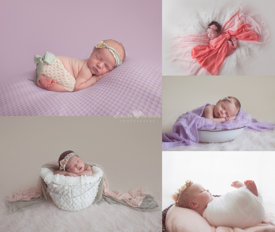 purple and pink newborn sessions in Houston