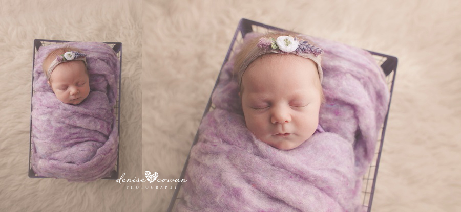 Kingwood Newborn Studio Photographer